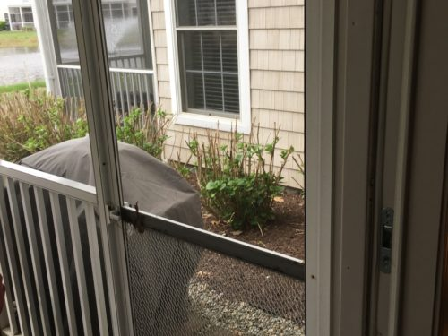 Cheap Builder Grade Screen Door