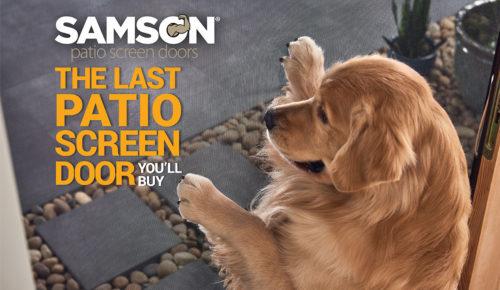 Samson Dog2