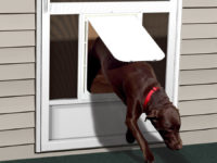 PCA Large Pet Door