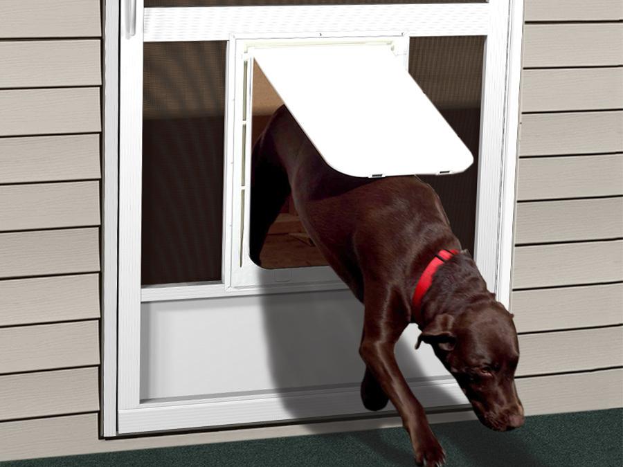 Pet Doors Screen Door With Dog Pca Products